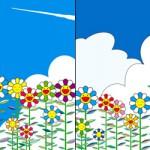 2011_flower1&2